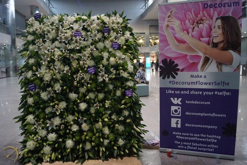 Международные выставки флористики