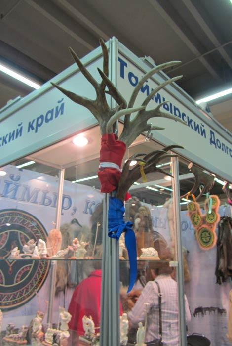 выставка жар птица