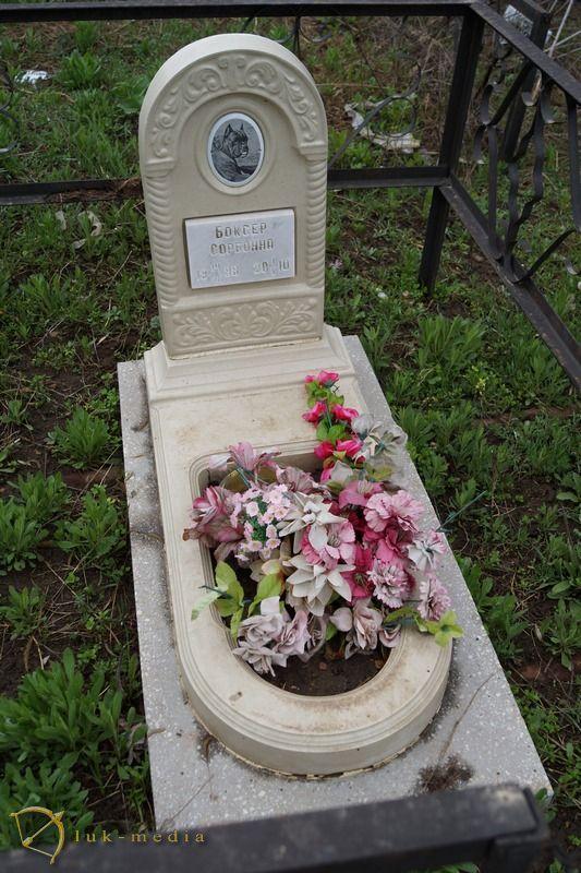кладбище домашних животных ростов на дону
