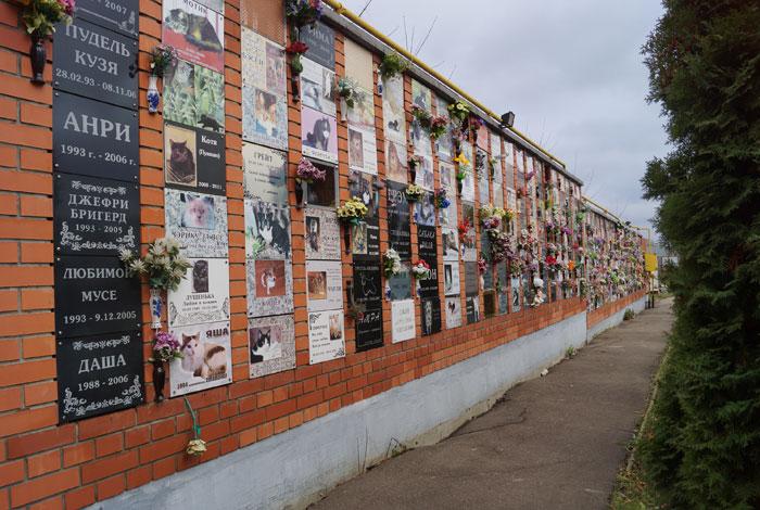 кладбище домашних животных в москве