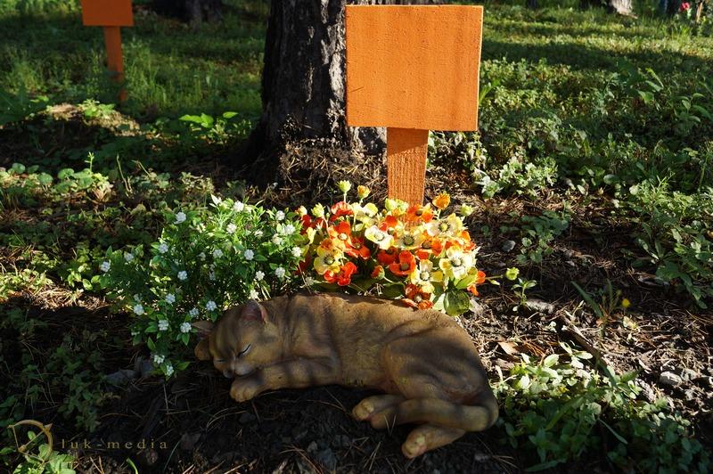 кладбище домашних животных екатеринбург memory animals