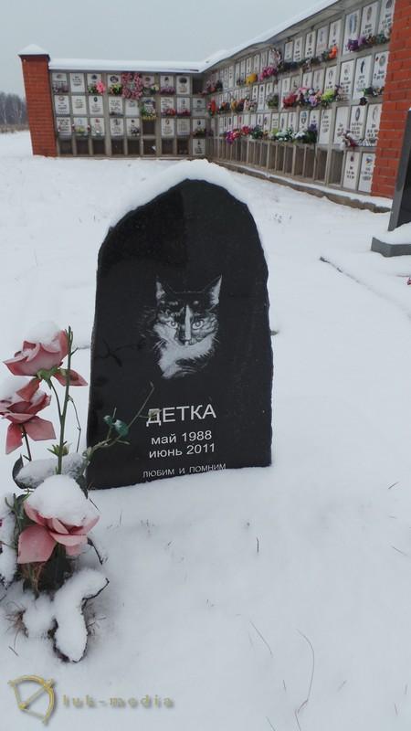 кладбище животных в санкт петербурге