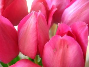 14 февраля день святого валентина
