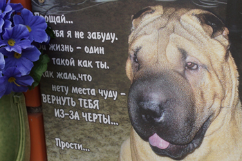 эпитафии домашним животным в стихах