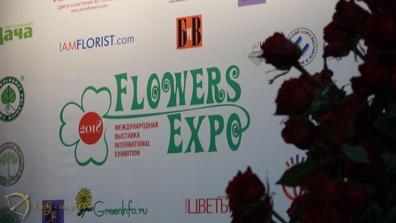 Цветы экспо скоро
