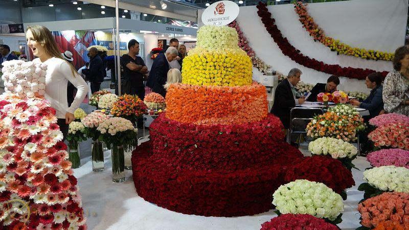 Регистрация на выставку ЦветыЭкспо