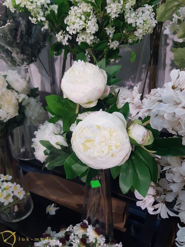 Выставка Цветы Экспо 2021