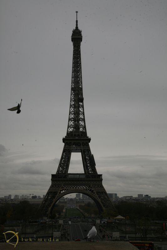 Выставка похоронных товаров в Париже