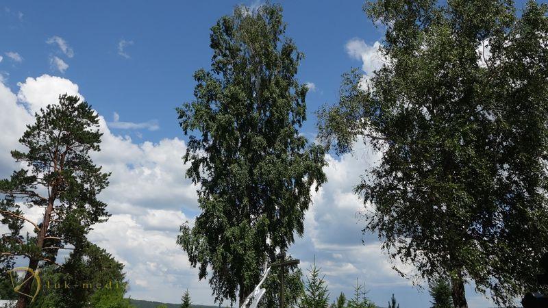 Покровский погост