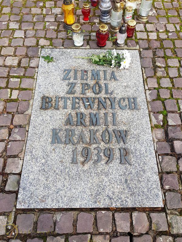 Раковицкое кладбище