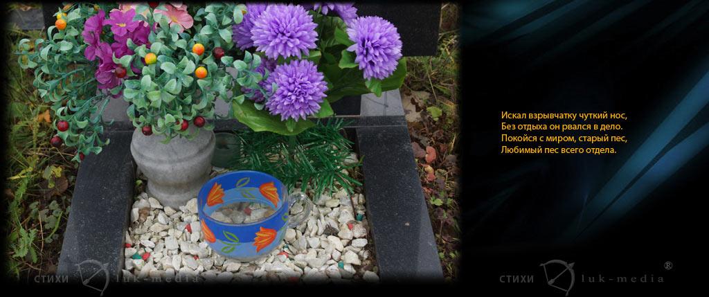 стихи на надгробие собаке