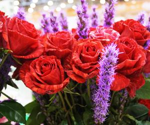поздравления с днем влюбленных