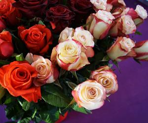 14 февраля день святого валентина стихи