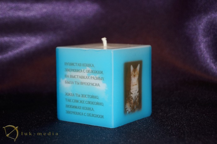 поминальная свеча кошке