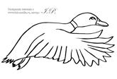 раскраска утка, раскраски утка бесплатно без регистрации ...