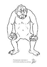 раскрасить обезьяну