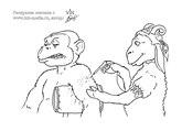 раскраска для взрослых обезьяна