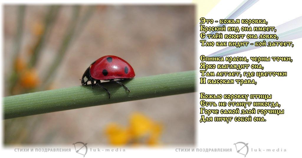стихи про божью коровку